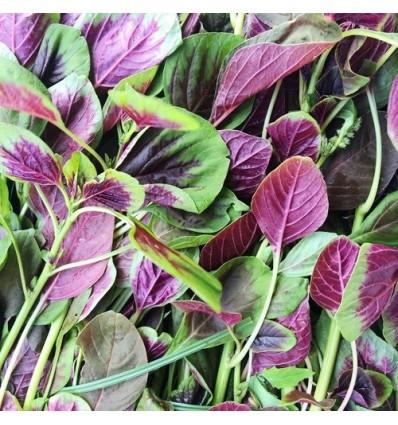 绿苋菜 Green Amaranth 400g